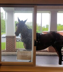 photo of horse at the pick-up window